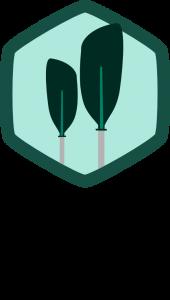 Logo Piraguismo