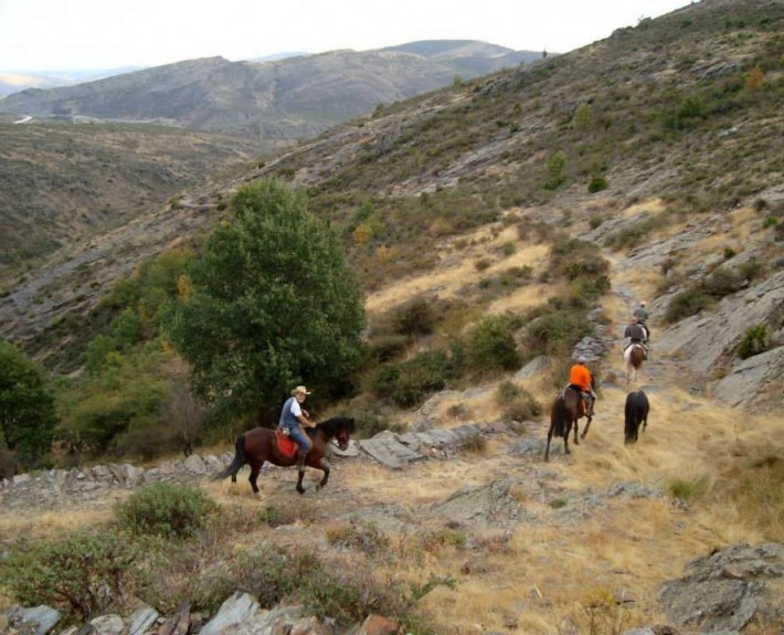 Rutas a caballo por la Sierra Norte