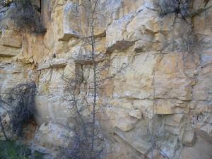 piedra de la cantera