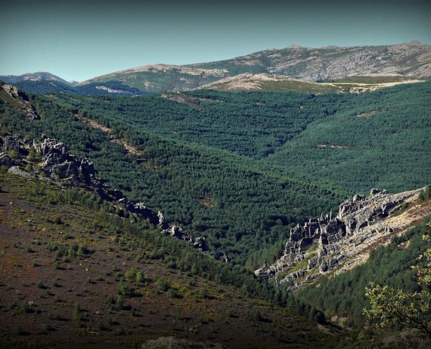 Ambos lados del arroyo Veguillas