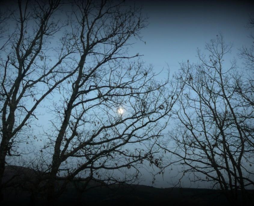 Cae la noche sobre la Tierra de Ayllón