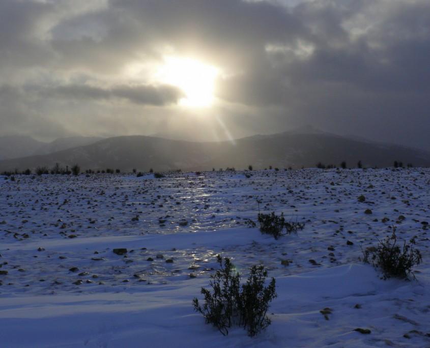 paisaje helador