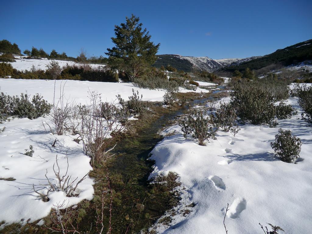 collado de la Vieja nevado
